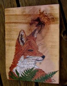Fox in the Fern