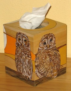 Owls - tissue box