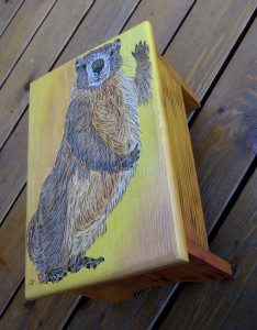 yellow bellied marmot foot stool